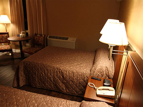 Standard Room Two Double Size Beds Marystown Hotel Convention
